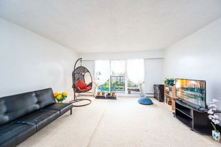 """Photo 6: 306 11240 DANIELS Road in Richmond: East Cambie Condo for sale in """"DANIELS MANOR"""" : MLS®# R2562282"""