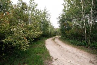 Photo 24: 79074 Road 37E Road in Brokenhead Rm: House for sale : MLS®# 202122646