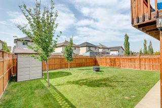 Photo 36: 17 Royal Birch Landing NW in Calgary: Royal Oak Residential for sale : MLS®# A1060735