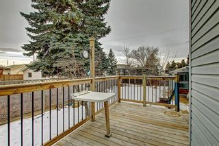 Photo 30: 283 QUEENSLAND Circle SE in Calgary: Queensland Detached for sale : MLS®# C4290754