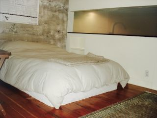 """Photo 10: 302 310 WATER Street in Vancouver: Downtown VW Condo for sale in """"down town"""" (Vancouver West)  : MLS®# R2104779"""