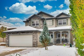 Photo 48: 52 Springbluff Lane SW in Calgary: Springbank Hill Detached for sale : MLS®# A1043718