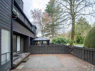 """Photo 12: 15 3220 ROSEMONT Drive in Vancouver: Champlain Heights Townhouse for sale in """"ASPENWOOD II"""" (Vancouver East)  : MLS®# R2566303"""