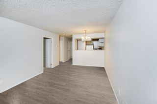 Photo 1: 215 2204 1 Street SW in Calgary: Mission Apartment for sale : MLS®# A1092168