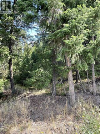 Photo 22: 1803 SOUTH LAKESIDE DRIVE in Williams Lake: Vacant Land for sale : MLS®# R2612495