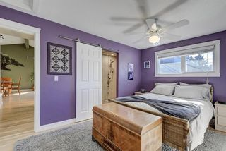 Photo 15: 3203 12 Avenue SE in Calgary: Albert Park/Radisson Heights Detached for sale : MLS®# A1139015