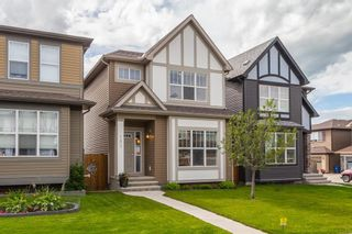 Photo 33: 163 EVANSBOROUGH Crescent NW in Calgary: Evanston Detached for sale : MLS®# A1012239