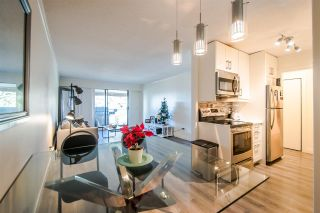 """Photo 4: 515 371 ELLESMERE Avenue in Burnaby: Capitol Hill BN Condo for sale in """"WESTCLIFF ARMS"""" (Burnaby North)  : MLS®# R2333023"""
