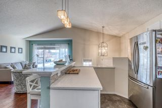 Photo 8: 10 Inverness Place SE in Calgary: McKenzie Towne Detached for sale : MLS®# A1095594