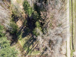 Photo 43: 8439 Island Hwy in Black Creek: CV Merville Black Creek House for sale (Comox Valley)  : MLS®# 872787