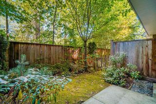 """Photo 32: 6 7298 199A Street in Langley: Willoughby Heights Townhouse for sale in """"York"""" : MLS®# R2602726"""