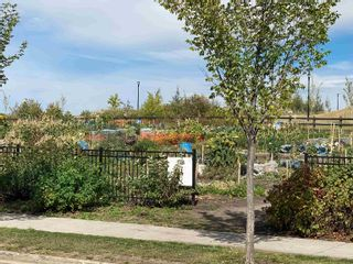 Photo 50: 1062 GAULT Boulevard in Edmonton: Zone 27 Townhouse for sale : MLS®# E4261913