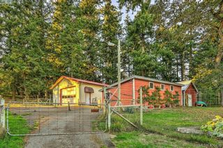 Photo 14: 4520 Markham St in VICTORIA: SW Beaver Lake House for sale (Saanich West)  : MLS®# 798977