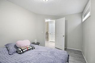 Photo 29: 87 Taravista Street NE in Calgary: Taradale Detached for sale : MLS®# A1084185