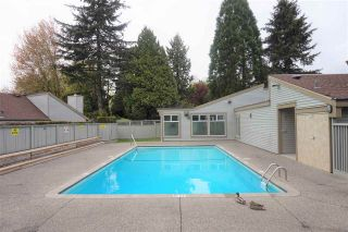 """Photo 19: 19203 FAIRWAY Drive in Surrey: Cloverdale BC Townhouse for sale in """"GREENSIDE  ESTATE"""" (Cloverdale)  : MLS®# R2539428"""