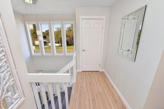 Photo 23: 3990 Hopesmore Dr in Saanich: SE Mt Doug House for sale (Saanich East)  : MLS®# 887284