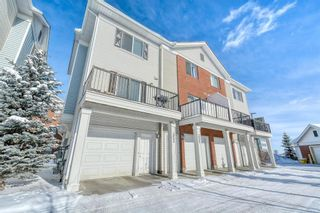 Photo 40: 353 Silverado Common in Calgary: Silverado Row/Townhouse for sale : MLS®# A1069067