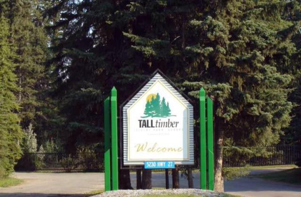 Welcome to Tall Timber!