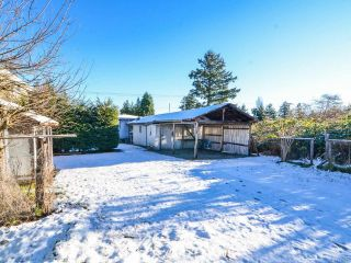 Photo 54: 800 Alder St in CAMPBELL RIVER: CR Campbell River Central House for sale (Campbell River)  : MLS®# 747357