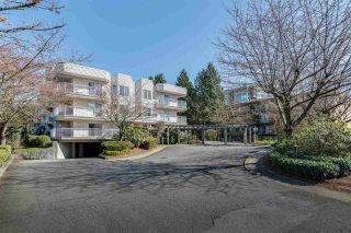 "Photo 2: 404 12206 224 Street in Maple Ridge: East Central Condo for sale in ""Cottonwood Place"" : MLS®# R2573864"