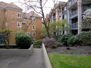 Photo 29: 309 3085 PRIMROSE Lane in LAKESIDE TERRACE: Home for sale : MLS®# V1112679