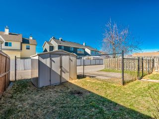Photo 38: 25 Martha's Haven Manor NE in Calgary: Martindale Detached for sale : MLS®# A1101906