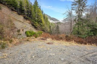 Photo 45: NE1/4SEC15 Gordon River Rd in Port Renfrew: Sk Port Renfrew Land for sale (Sooke)  : MLS®# 864408