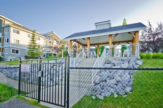 Photo 19: 107 390 Marina Drive: Chestermere Apartment for sale : MLS®# A1097962