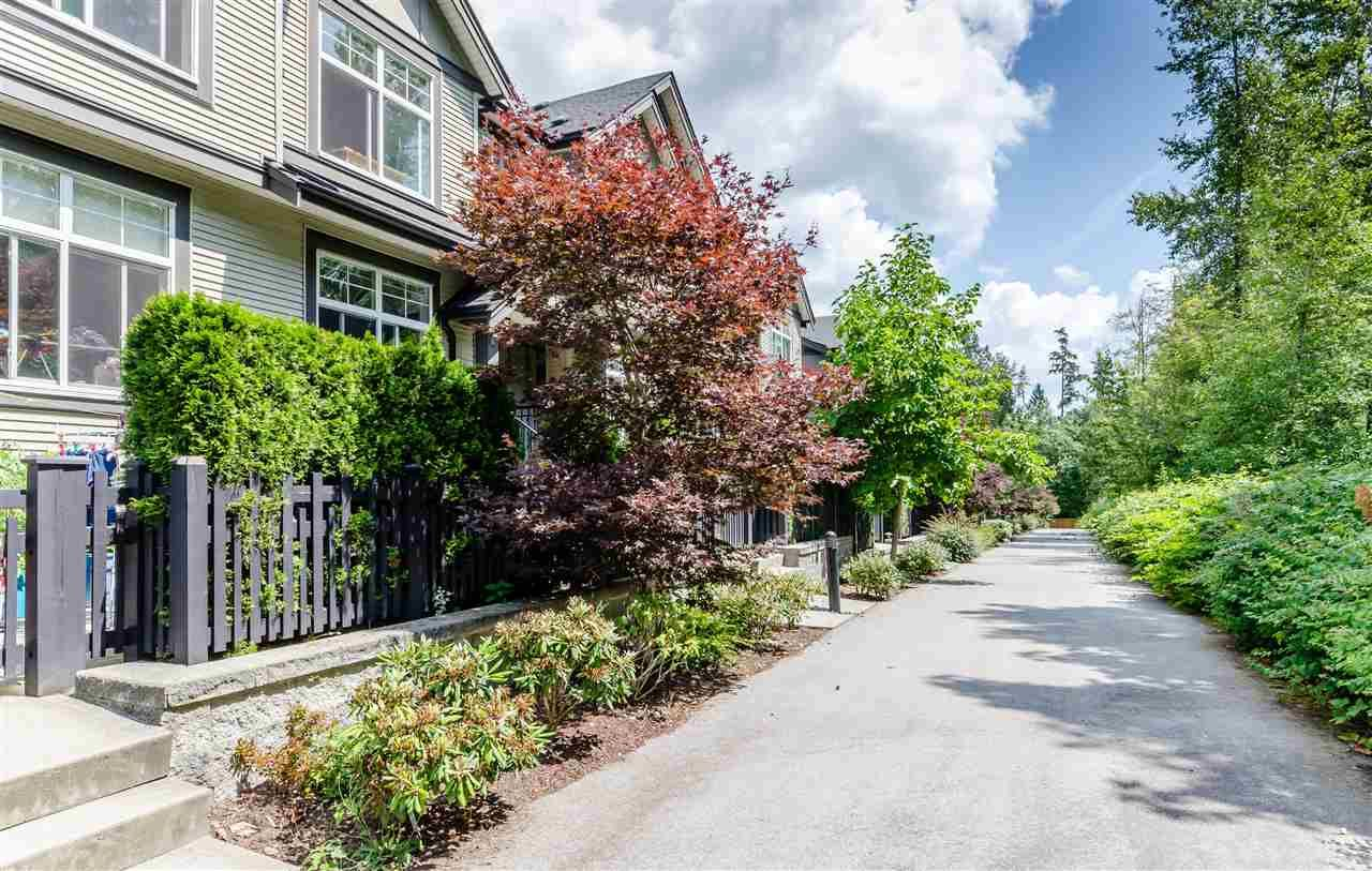"""Main Photo: 29 15788 104 Avenue in Surrey: Guildford Townhouse for sale in """"BLUETREE HOMES AT BISHOP CREEK"""" (North Surrey)  : MLS®# R2390092"""