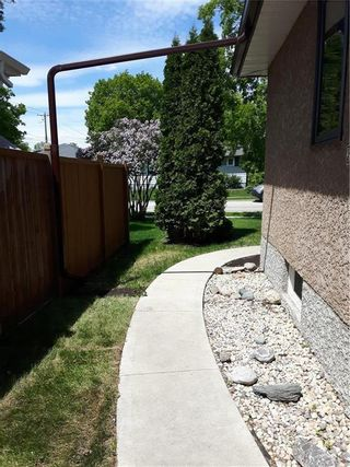Photo 26: 106 Thorndale Avenue in Winnipeg: Residential for sale (2D)  : MLS®# 202113603
