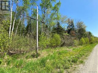 Photo 17: 5264 Rte 770 in Rollingdam: Vacant Land for sale : MLS®# NB058269