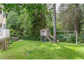 Photo 19: 1307 CAMELLIA Court in Port Moody: Mountain Meadows House for sale : MLS®# R2380794