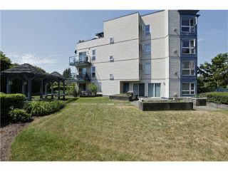 """Photo 17: 207 20277 53 Avenue in Langley: Langley City Condo for sale in """"Metro II"""" : MLS®# F1446990"""
