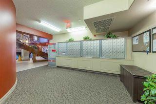 Photo 31: 104 45 INGLEWOOD Drive: St. Albert Condo for sale : MLS®# E4229075