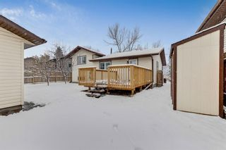 Photo 30: 28 Mckerrell Crescent SE in Calgary: McKenzie Lake Detached for sale : MLS®# A1049052