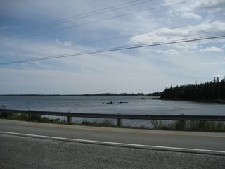 Photo 14: 17107 Highway 7 in Tangier: 35-Halifax County East Residential for sale (Halifax-Dartmouth)  : MLS®# 202101270