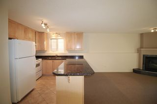 Photo 14: 101,102, 201 ,202,301,302 130 12 Avenue in Calgary: Crescent Heights Apartment for sale : MLS®# A1114719