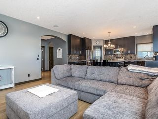 Photo 15: 197 Rainbow Falls Heath: Chestermere Detached for sale : MLS®# A1062288