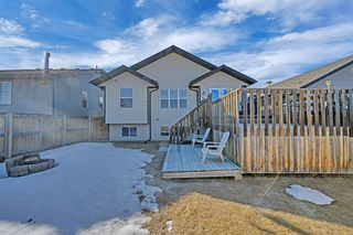 Photo 26: 101 Willow Green: Olds Detached for sale : MLS®# A1143950