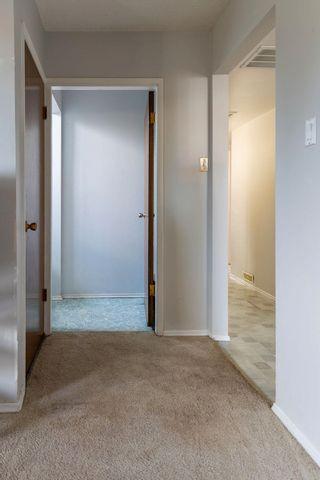 Photo 21: 10503 48 Avenue in Edmonton: Zone 15 House for sale : MLS®# E4246967