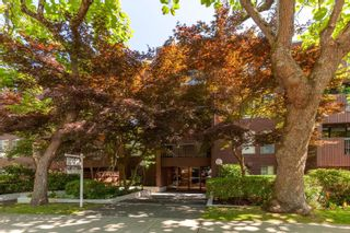 """Photo 16: 101 2920 ASH Street in Vancouver: Fairview VW Condo for sale in """"Ash Court"""" (Vancouver West)  : MLS®# R2615641"""