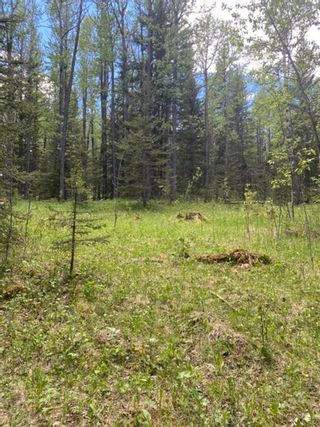 Photo 13: 5.78 Acres Parkins Road: Rural Foothills County Land for sale : MLS®# A1086953