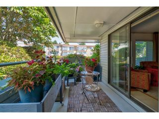 """Photo 34: 101 1341 GEORGE Street: White Rock Condo for sale in """"Oceanview"""" (South Surrey White Rock)  : MLS®# R2600581"""