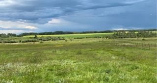 Photo 5: 320232 Range Road 23: Rural Mountain View County Land for sale : MLS®# A1015216
