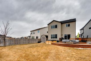 Photo 40: 92 COPPERPOND Mews SE in Calgary: Copperfield Detached for sale : MLS®# A1084015