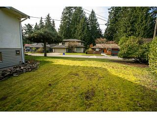 Photo 4: 4378 CHEVIOT Road in North Vancouver: Forest Hills NV House for sale : MLS®# V1111023