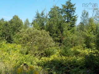 Photo 3: Lot M-1 127 Charleswood Drive in Windsor Junction: 30-Waverley, Fall River, Oakfield Vacant Land for sale (Halifax-Dartmouth)  : MLS®# 202121061