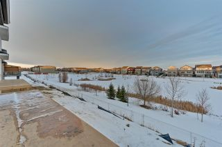 Photo 37: 9823 223 Street NW in Edmonton: Zone 58 House for sale : MLS®# E4224215