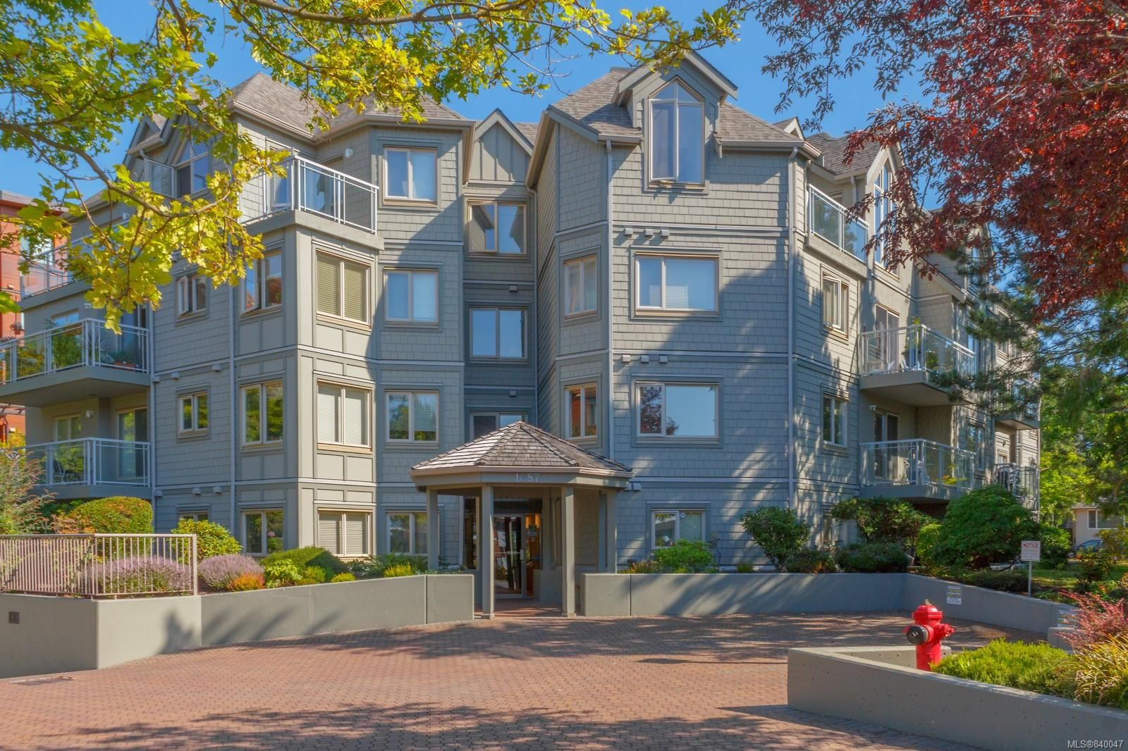 Main Photo: 206 1687 Poplar Ave in Saanich: SE Mt Tolmie Condo for sale (Saanich East)  : MLS®# 840047