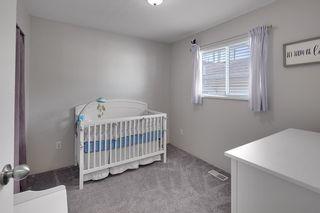 Photo 19: 20345 115 Avenue in Maple Ridge: Southwest Maple Ridge House for sale : MLS®# R2590240
